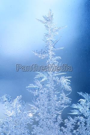 ice cold ice