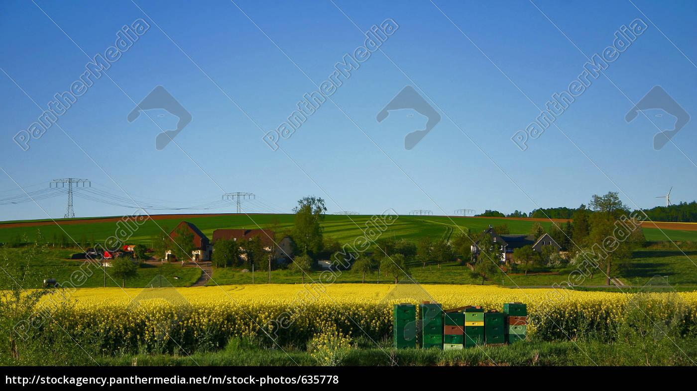 frühlling, auf, dem, land - 635778
