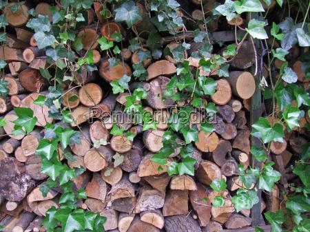 brennholz - 651388
