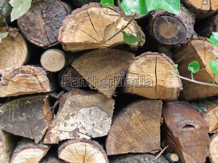 brennholz - 651486