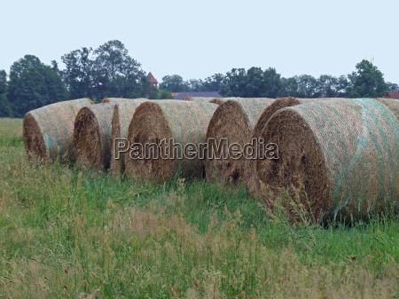 the straw rolls