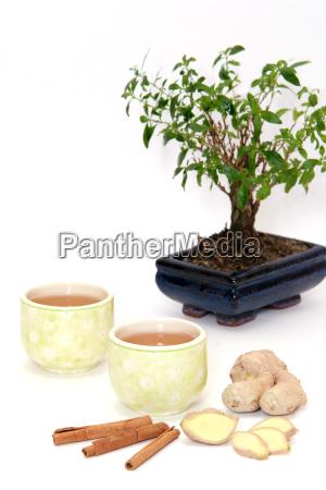 gruener tee und bonsai