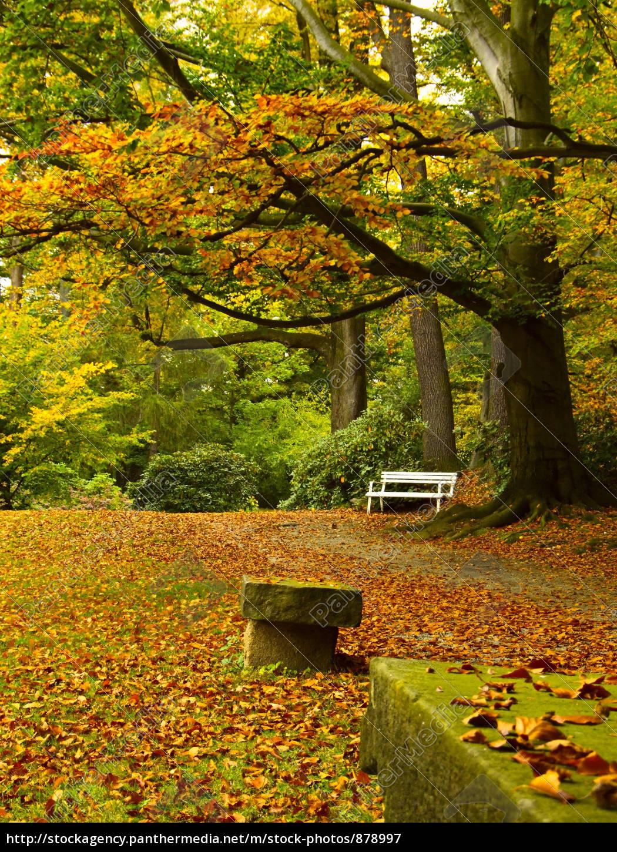 Stockfoto 878997 Herbstliche Parkanlage