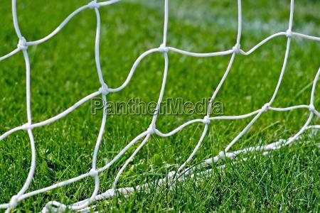 soccer net base in the grass