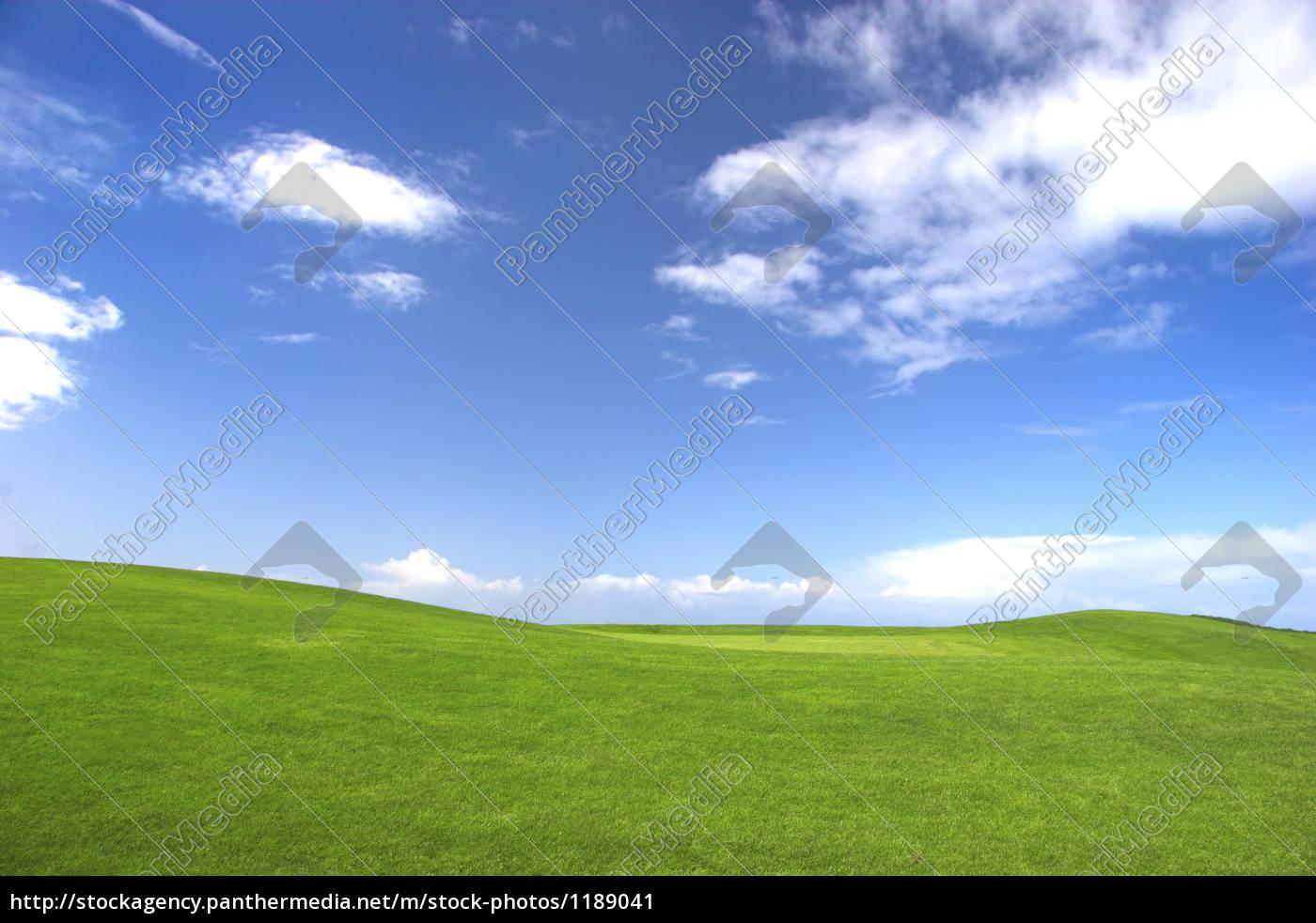 grünes, feld - 1189041