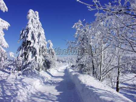 czech republic snowy way