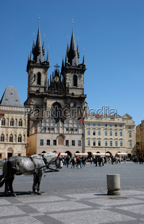 cathedral and a horse