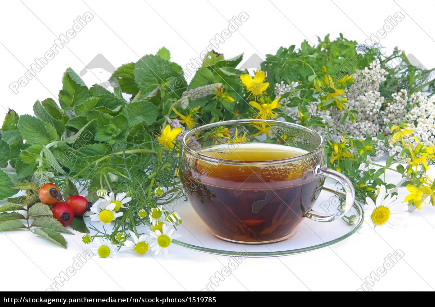 Top Tee Kräuter - tea herbal 01 - Stockfoto - #1519785 - Bildagentur #UE_19