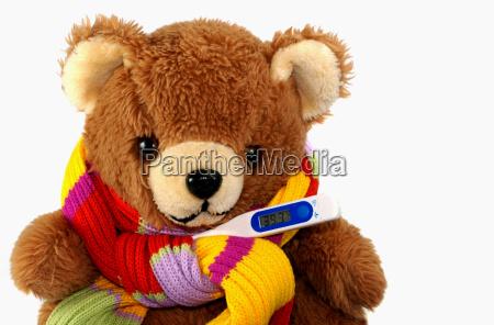 kranker teddybaer