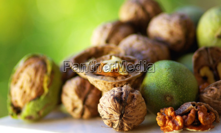 fruit of autum walnuts
