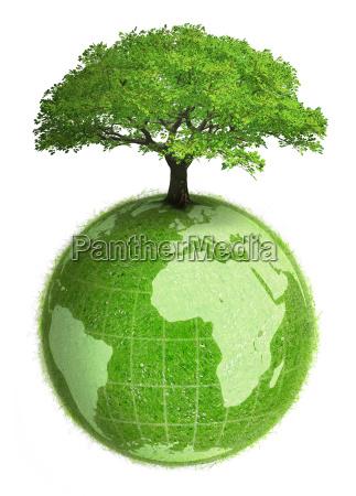gruene erde