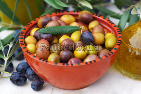 olives of the mediterranean