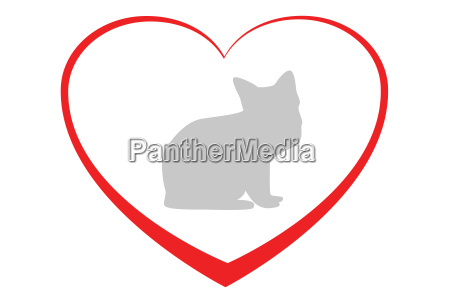 heart for cats