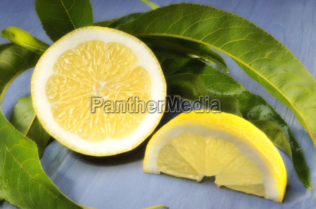attached lemon with leaves