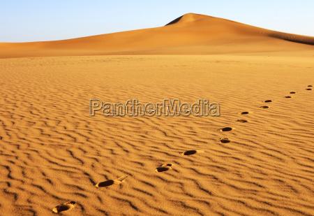 fussspuren auf einer sandduene sahara