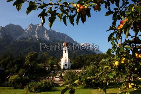 grainau kirche und apfelbaum