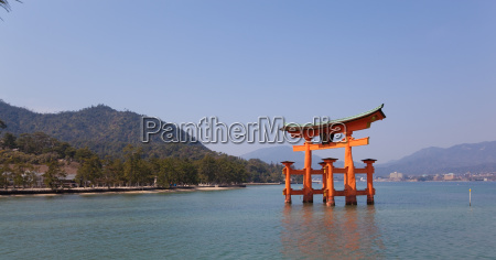 torii tor in miyajima japan