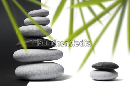 bamboo and pebble still life