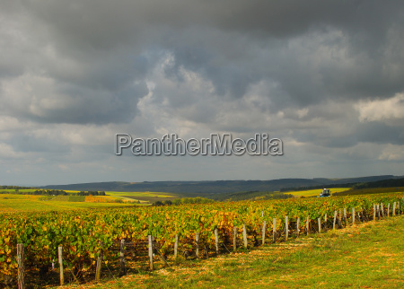 storm over the vineyards in burgundy