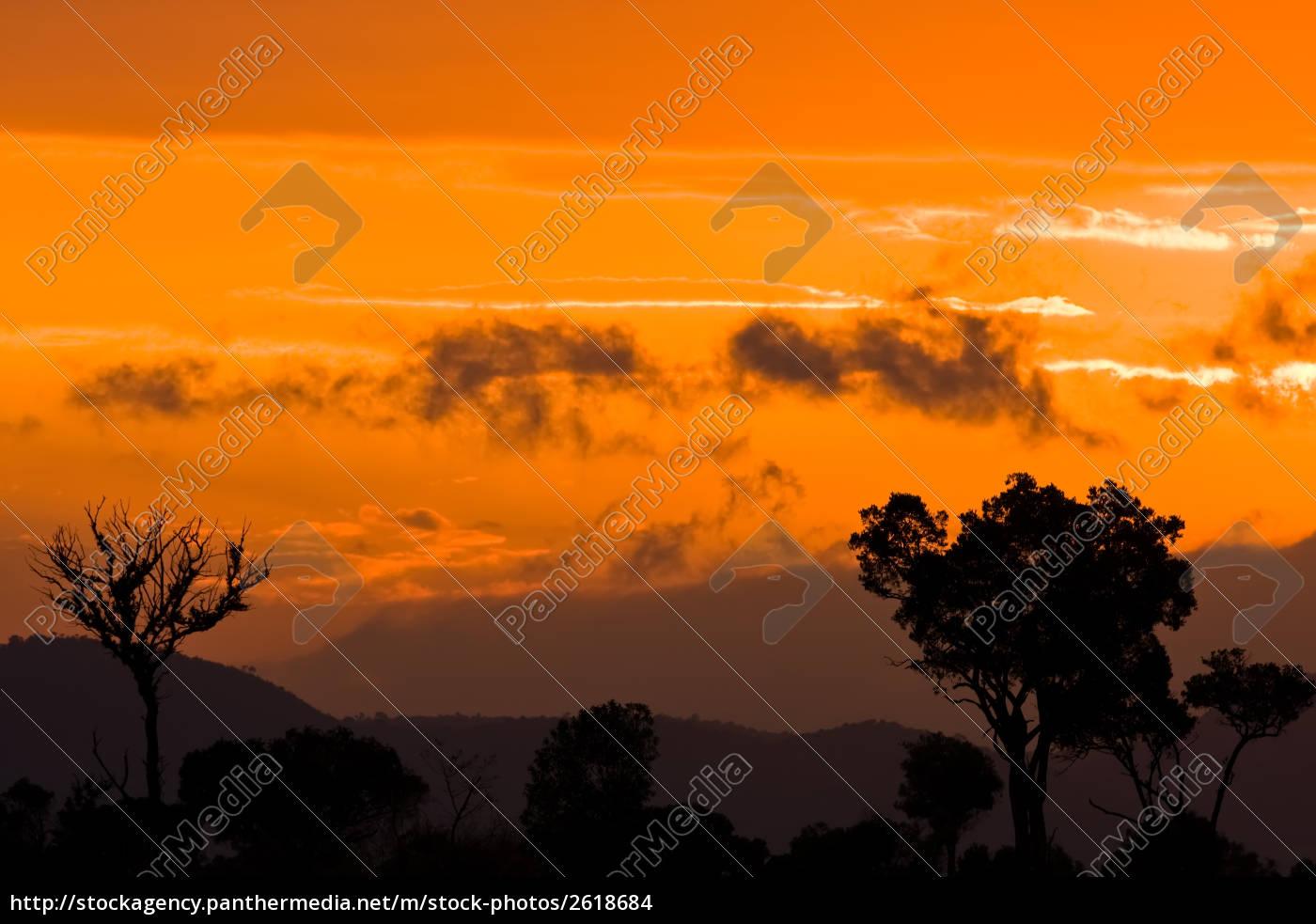 Lizenzfreies Foto 2618684 Guten Morgen Afrika Kenia