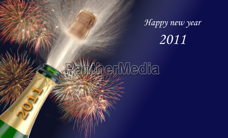new year in 2011