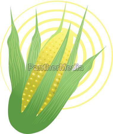 essen nahrungsmittel lebensmittel nahrung korn frische