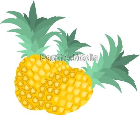 suesses frucht obst putzig ananas saftig