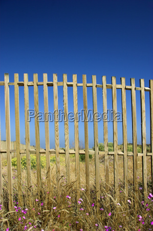 fences in blue