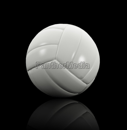 white volley ball