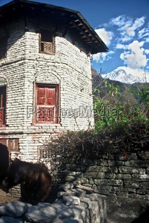 tibetan house nepal