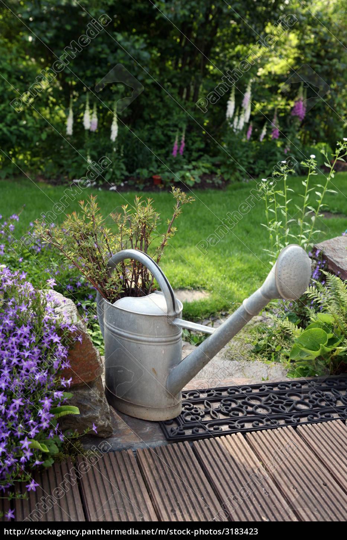 Zink Gießkanne Im Garten Stockfoto 3183423 Bildagentur