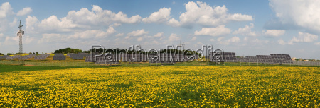 solar park on dandelion meadow