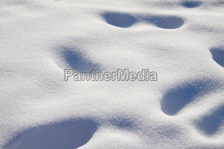 verschneite spuren
