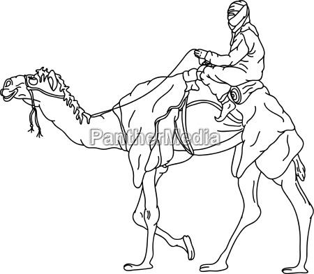 kamel illustration malen zeichnen anmalen beduine