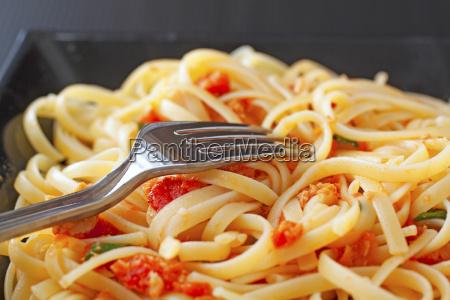 essen nahrungsmittel lebensmittel nahrung spagetti sosse