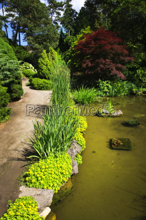 landscaped garden path and pond