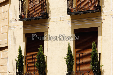 potted plants in balconies of a