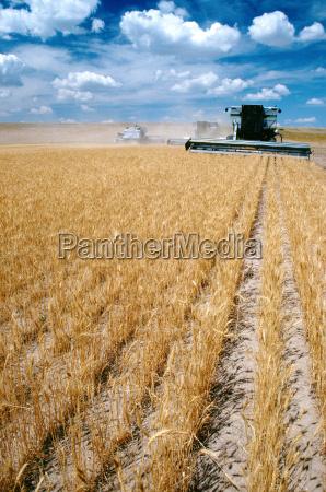 agricolo colore moderno polvere agricoltura luce