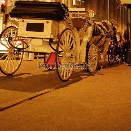 pferdewagen auf der strasse chicago illinois