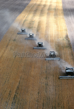 aerial view of custom harvest combines