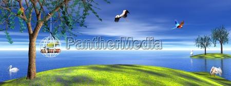 garten himmel paradies himmelreich voegel freiheit