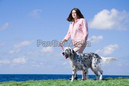 frau haustier kuscheltier hund englische vorstehhund