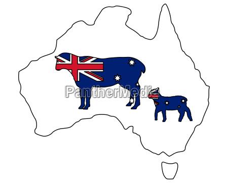 australische schafe