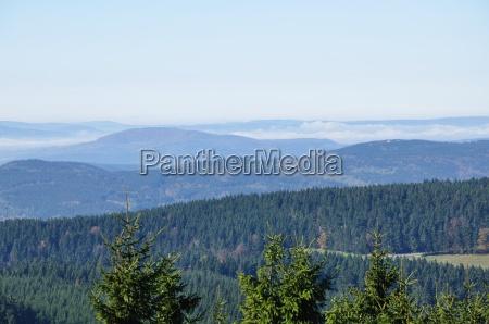 panorama thueringen skov