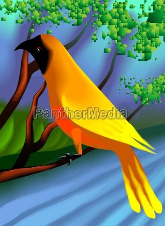 baum vogel tiere hintergrund