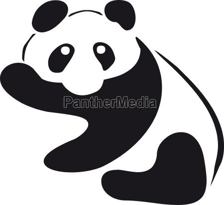 tier baer illustration panda veranschaulichung