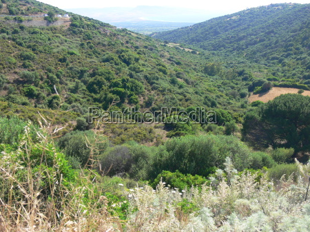 landschaft auf sardinien 2