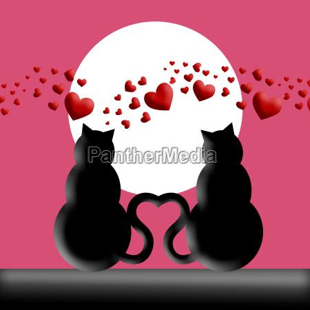 gluecklich valentinstag katzen in liebe silhouette