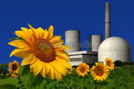 atomkraftwerk, hinter, einem, sonnenblumenfeld - 4192703