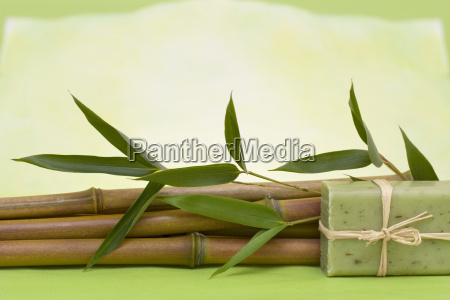 wellness with herbal soap in green
